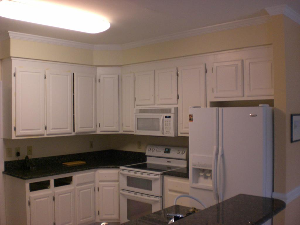 White Kitchen Cabinets With Exposed Hinges