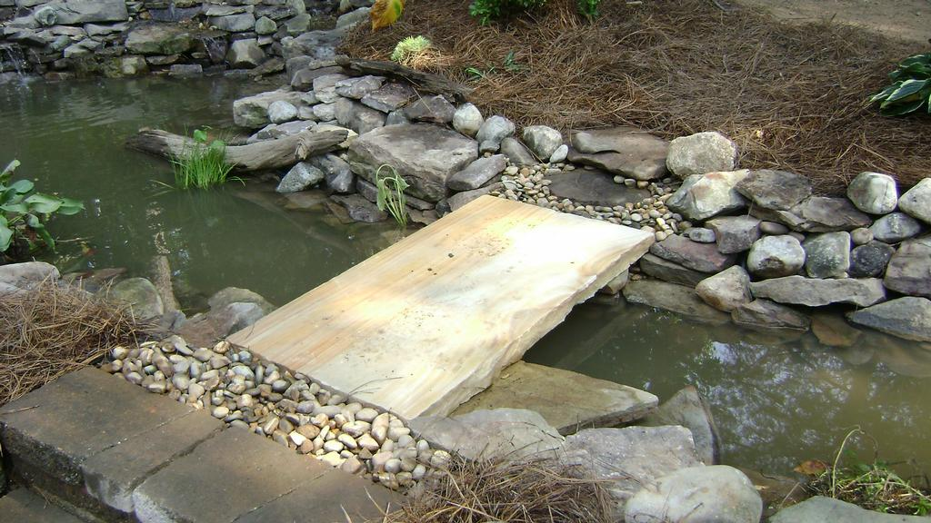 Koi pond revision jpg from fine edge landscape design in for Koi pond maintenance near me