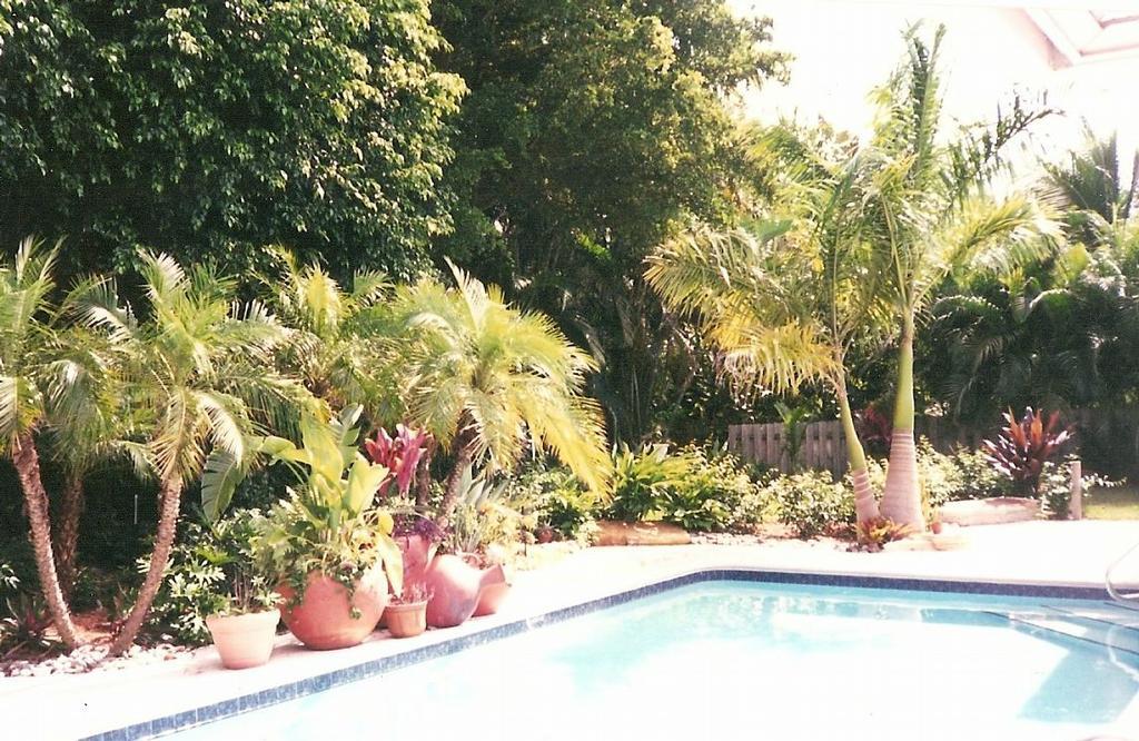 Pool Patio Landscaping From Wizzard Lake Nursery Dba Tree