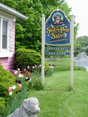 Sudzy Dog Grooming And Dog Spa