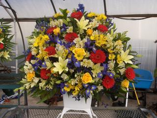 Osterbrock Greenhouse & Florist - Cincinnati, OH