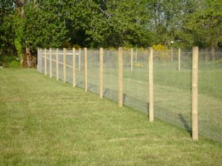 60 Quot Non Climb Horse Fence From Statewide Fence In Salem