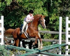 Concord Acres - Morrisville, PA