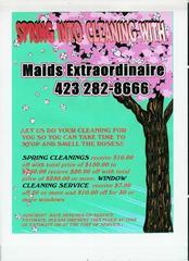 Maids Extraordinaire - Johnson City, TN