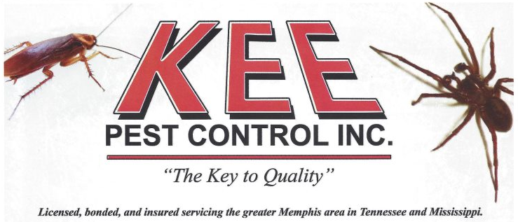 Holiday Termite And Pest Control