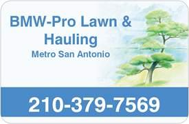 Bmw Lawn Care Logo 2008 Gif From San Antonio S Bmw Pro
