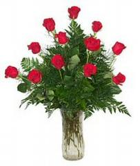Special Occasion Flowers & Gifts Ltd - Newport News, VA