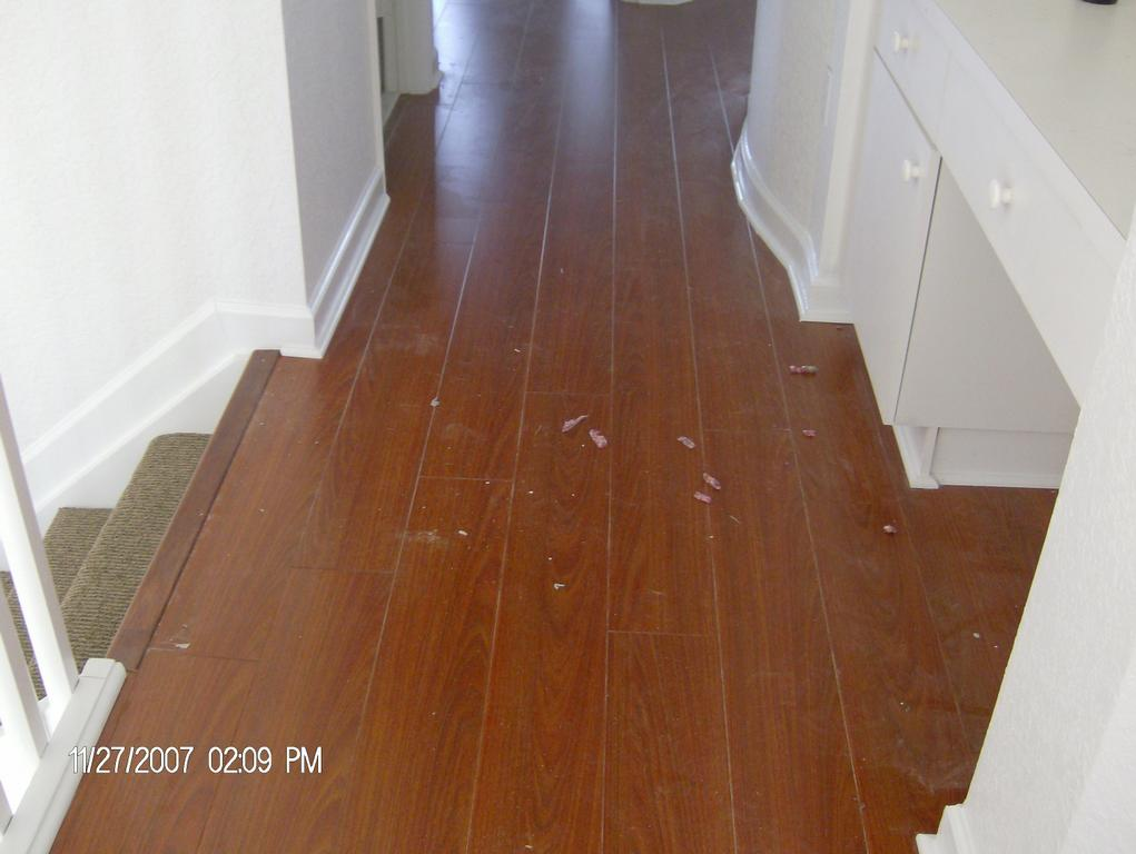 Laminate flooring laminate flooring doral fl for Riva laminate flooring
