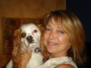 The Dog Dorks - Tampa, FL