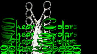 Shear Color Hair Studios Inc - St. Johns, FL