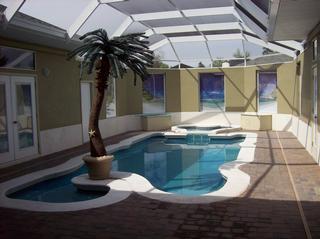 A Cool Pool - Spring Hill, FL