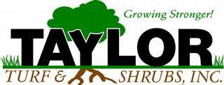 Taylor Turf & Shrubs Inc - Debary, FL