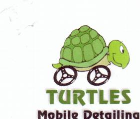 Turtle's Mobile Detailing - Conyers, GA