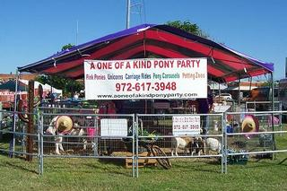 A One Of A Kind Pony Party - Waxahachie, TX