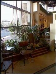 Solarus Salon & Spa - Arlington, VA