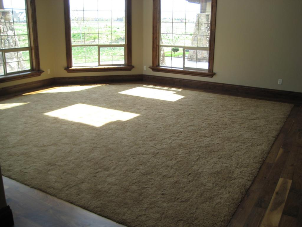 Carpet with hardwood border living room remodel pinterest Carpet or wooden floor in living room