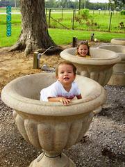 Streets Exquisite Plants & Aquatic Gardens INC - Fairhope, AL