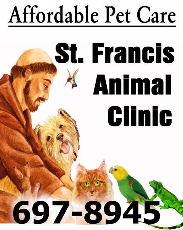 West Palm Animal Clinic West Palm Beach Fl