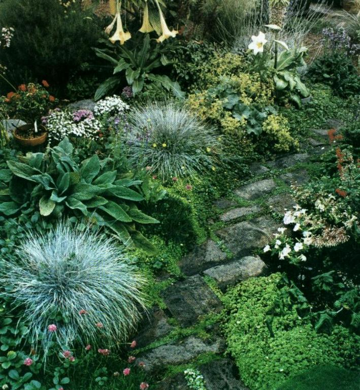 Raleigh Garden Path From Down To Earth Landscape Designs