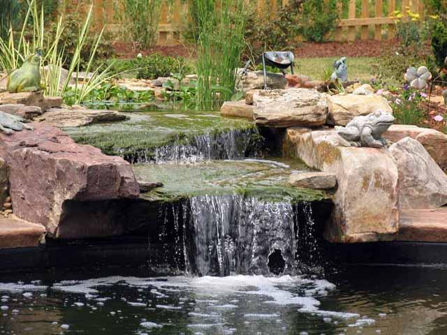 Step by step pools and landscaping ideas lowes coupons for Koi pool design