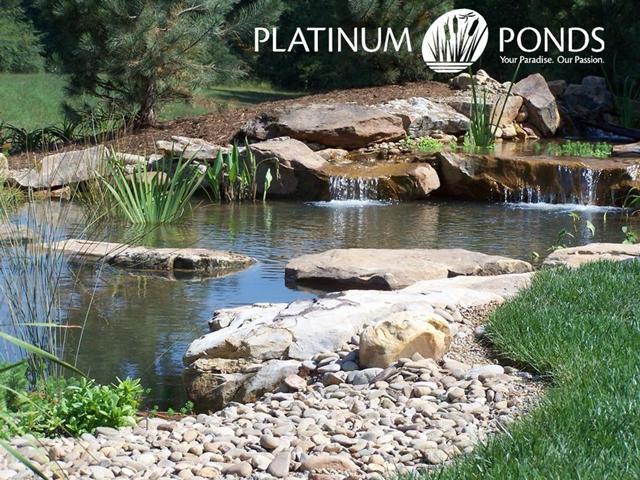 Pictures For Platinum Ponds Amp Lake Management In Greer Sc