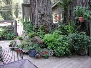 Garden Grill - Guerneville, CA