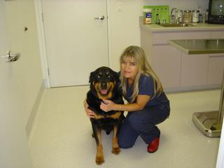 Eastlake Village Veterinary Clinic - Chula Vista, CA
