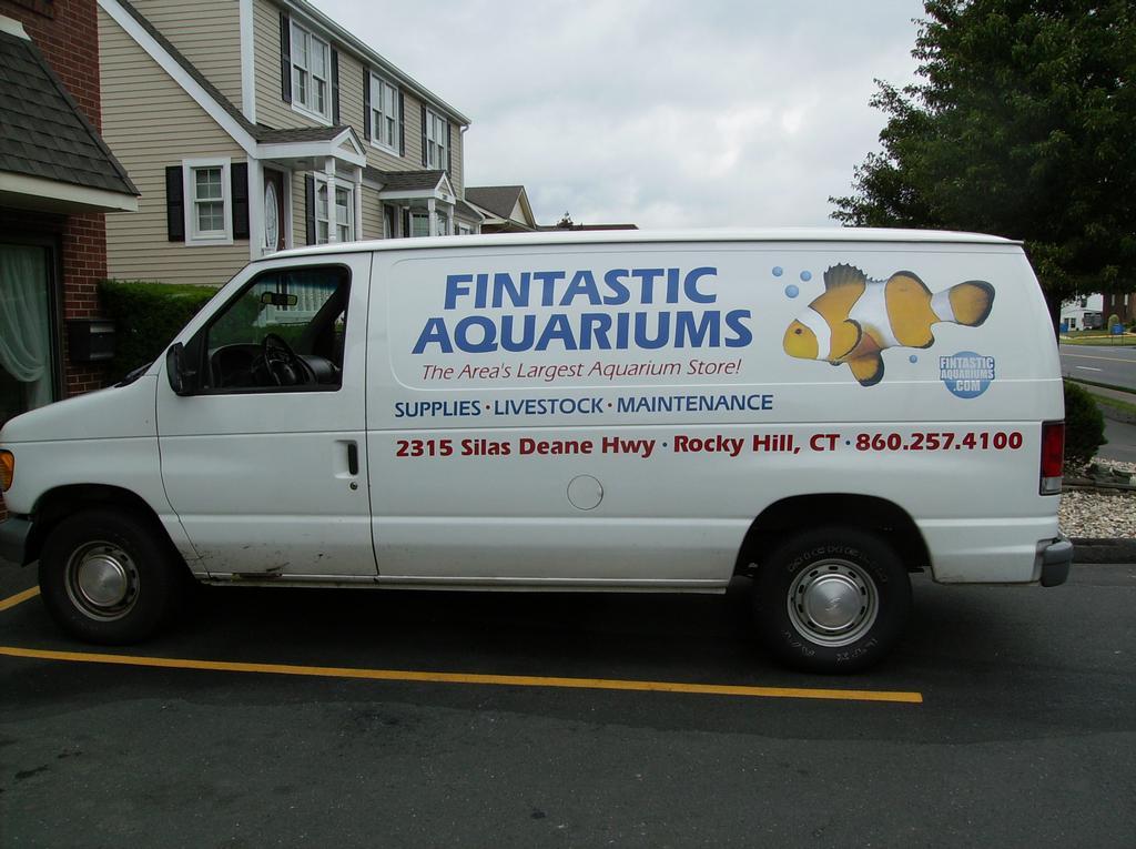 Fintastic Aquariums Plus East Hartford Ct 06108 860