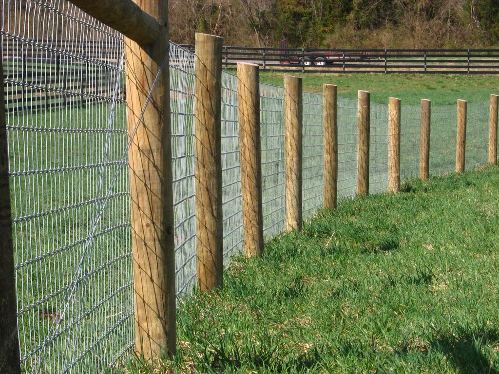 No Climb Wire Three From Maryland Horse Fencing In