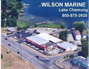 Wilson Marine - Brighton, MI
