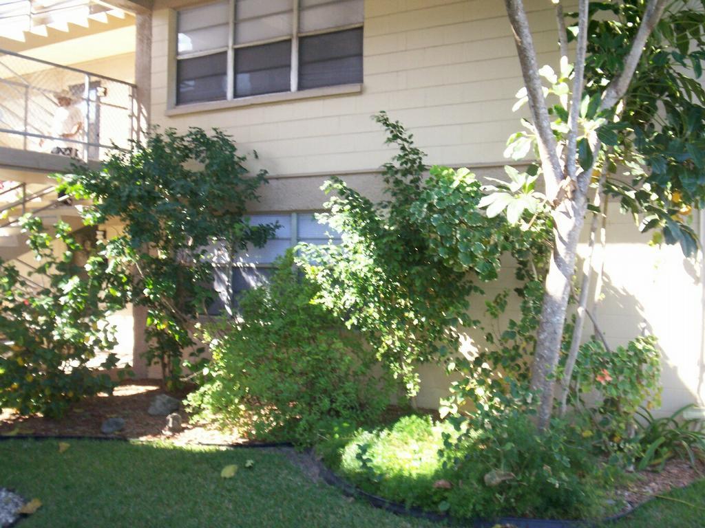 Pentagon Garden Apartments Melbourne Fl