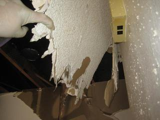 Pictures for mold testing mold inspections mold removal for Gypsum board asbestos