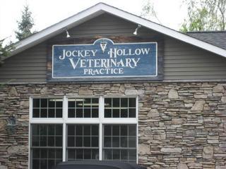 Jockey Hollow Veterinary Prctc - New Milford, NY