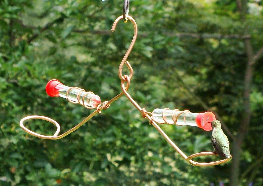 hummingbird feeder design