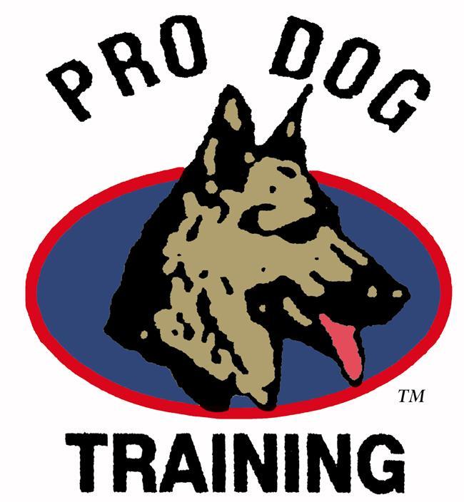 Dog Training Palm Beach Gardens Fl
