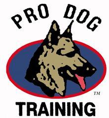 Pro Dog Training Palm Beach Gardens Fl 33418 561 575 1244