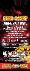 Pasco Jewelry & Pawn Inc - New Port Richey, FL