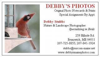 Debby's Photos - Brunswick, ME