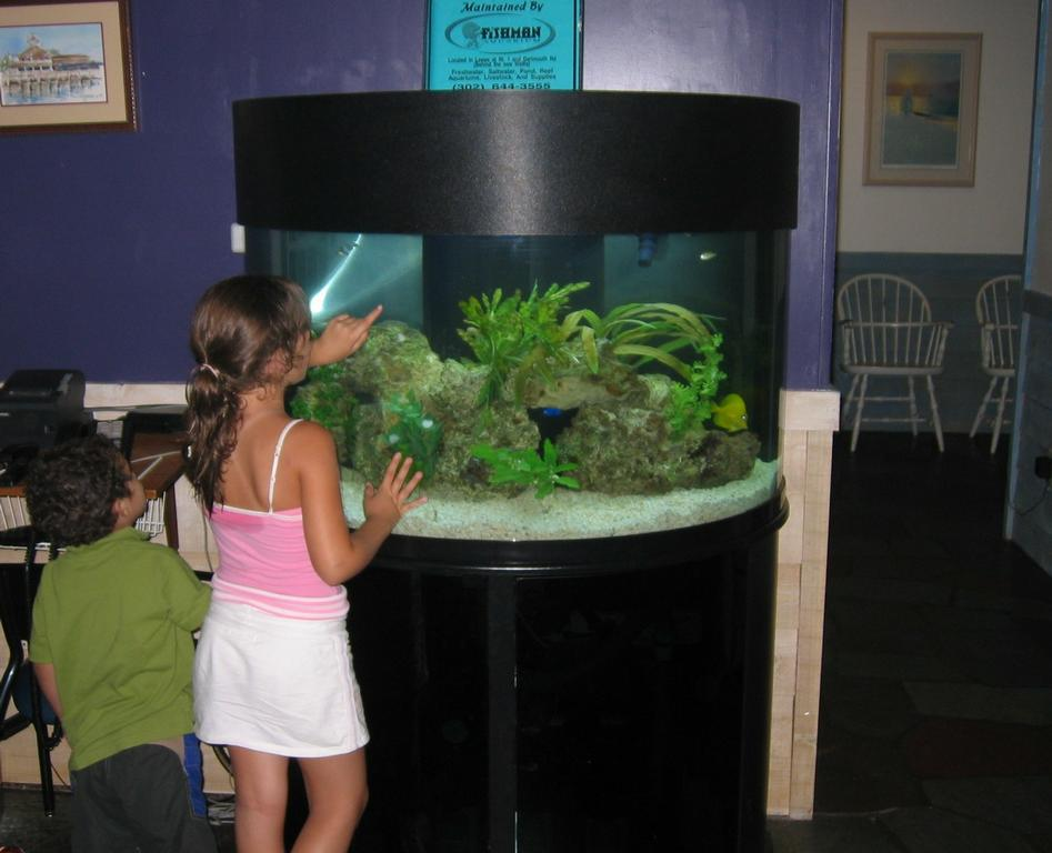Fishman Aquarium Center Wilmington De 19803 302 658 8265