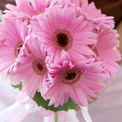 Lasting Florals~Florist - Midlothian, VA