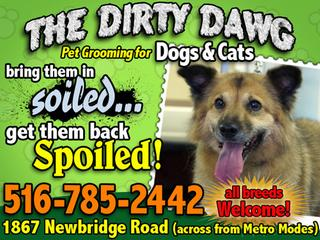 Dirty Dawg - Bellmore, NY