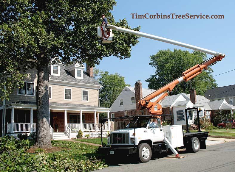 Boom Truck Timcorbinstrrserjp By Tim Corbins Tree Service LLC