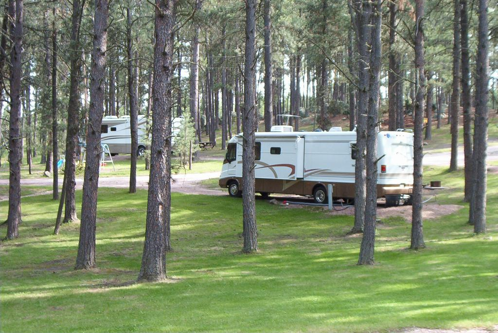 Big pine campground custer sd 57730 800 235 3981 camping for Cabins near custer sd