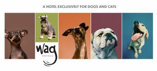 Wag Hotels - San Francisco, CA