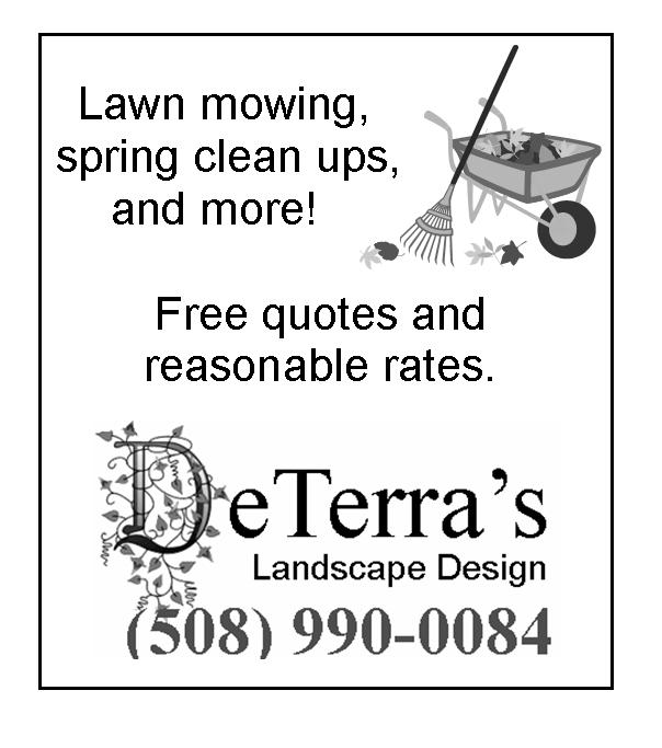Spring Cleanups by DeTerra's Landscape Design