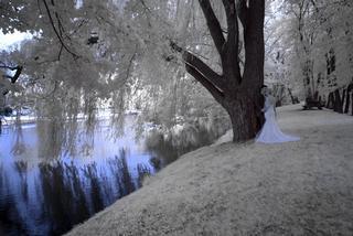 Photography By Barry - Mount Joy, PA