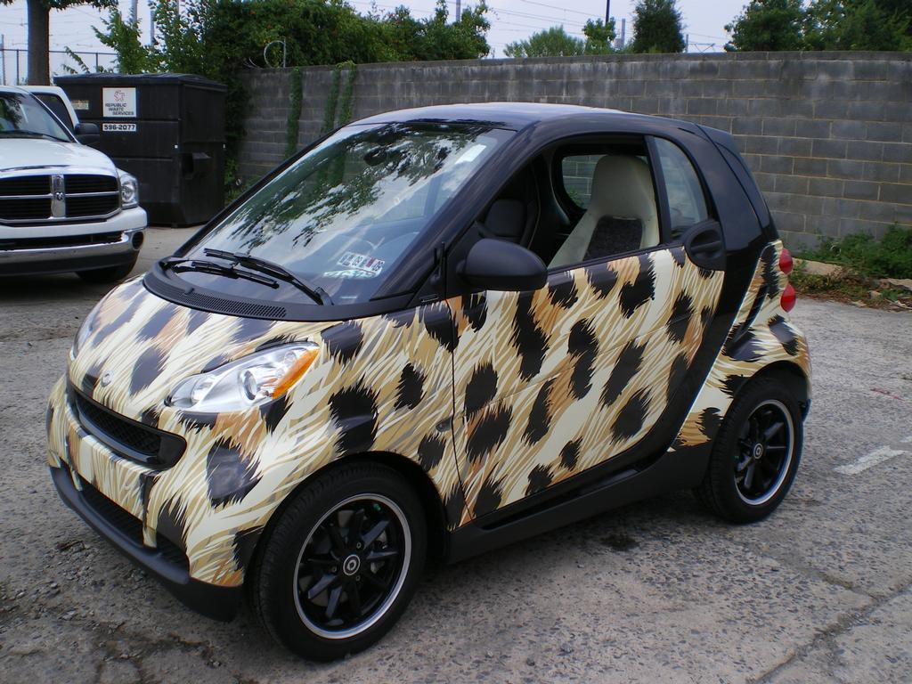 1000 Images About Smart Car On Pinterest Smart Car