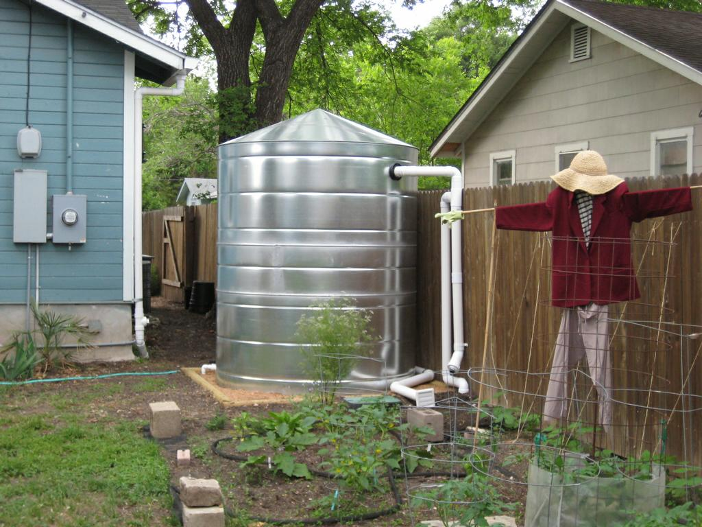 Rainwater Collection And Urban Vegetable Gardening Jpg