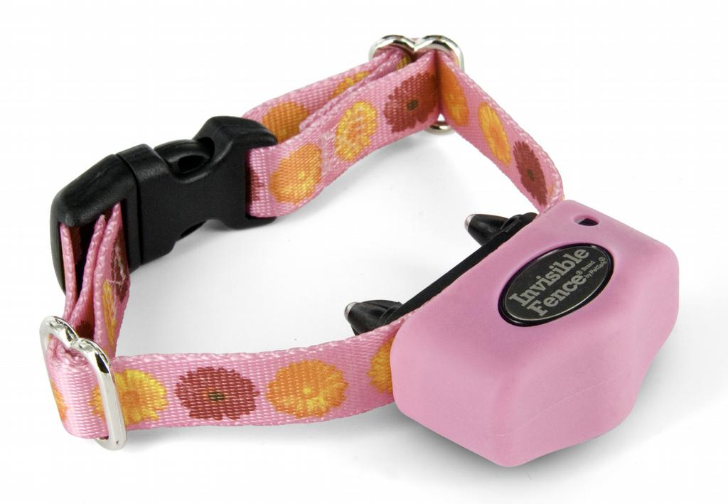 Microlite Collar Pink1 With Skin 1 Jpg From Invisible