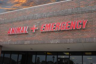 Central Oklahoma Veterinary Emergency - Norman, OK